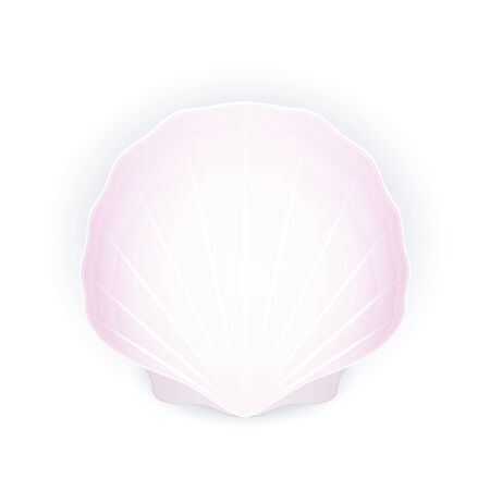 Seashell isolated on white background, pink shell, vector illustration Ilustração