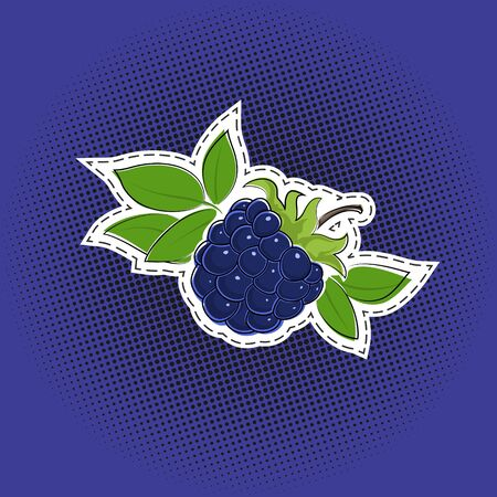 Sweet berry blueberries sticker on a purple violet pop art halftone background, black dots in the form of a circle , pins or patches, retro style, vector illustration