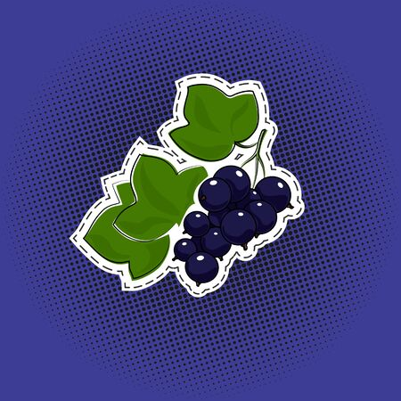Sweet berry blackcurrant sticker on a purple violet pop art halftone background, black dots in the form of a circle , pins or patches, retro style, vector illustration