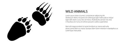 Banner of track of forest animal, traces of a predatory animal bear, vector illustration