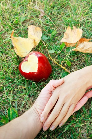 Romantic image with hands of  young couple of lovers on green grass with an apple with heart on it near and yellow leaves Stock Photo