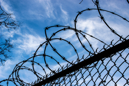Barbed wire fence with blue sky background.