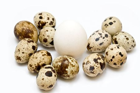different eggs on neutral background Stock Photo - 4973989