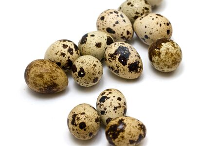 quail eggs on neutral white background Stock Photo - 5128555