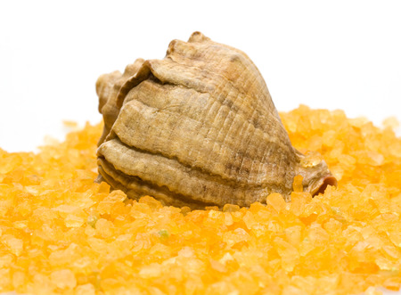 seashell and colored sea salt on white