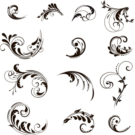 Set of floral elements for design   Illustration