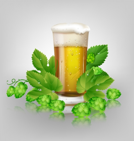 green beer: glass of beer and hops Illustration