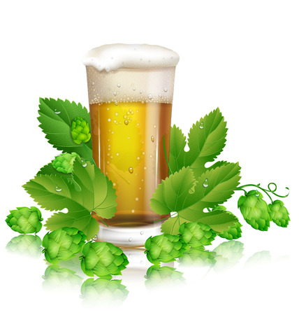 brewed: glass of beer and hops Illustration