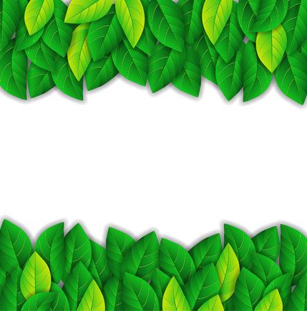 Hintergrund mit hellen grünen Blättern Standard-Bild - 25542621