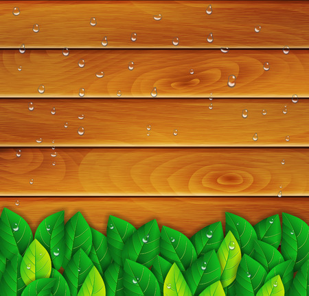 green leaves on a wooden background Vector
