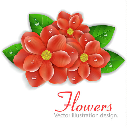 beautiful red hibiscus flower:  red  flowers Illustration