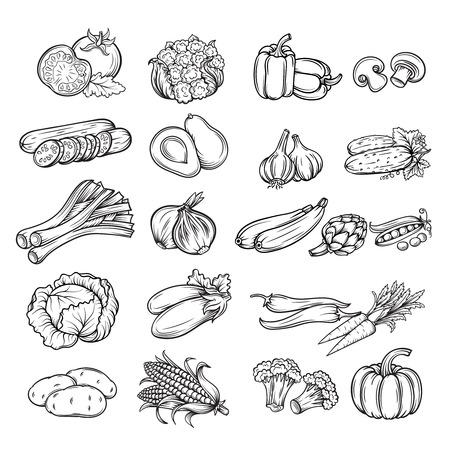 potato: vector bộ mặt rau rút khác nhau, đường màu đen cô lập Hình minh hoạ