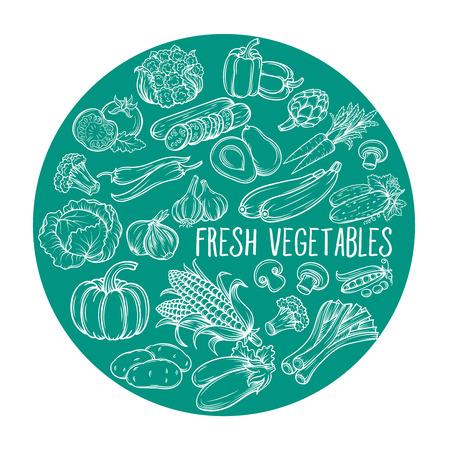 garlic: Vector illustration with hand drawn vegetables. Round composition. Illustration