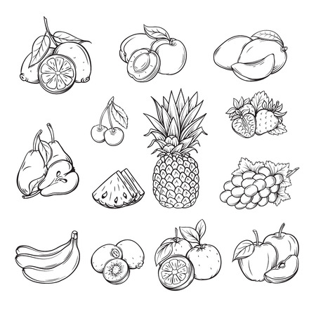 vector set of different hand drawn fruit , black line isolation
