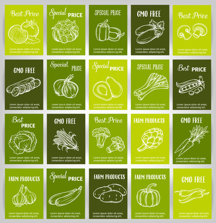 organic food: vector set of cards  with hand drawn vegetables