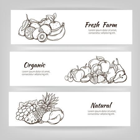 手描きバナー ベクトル フルーツです。果物を編集することができます、移動