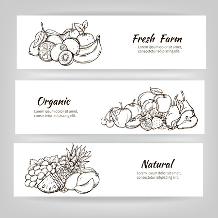 fresh: Hand drawn banners vector fruit. Fruits can be edited, moved Illustration