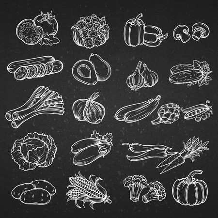 Vector set of different hand drawn decorative vegetable . White line on the black .
