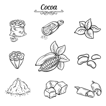 plant to drink: set hand draw decorative cocoa chocolate, black line