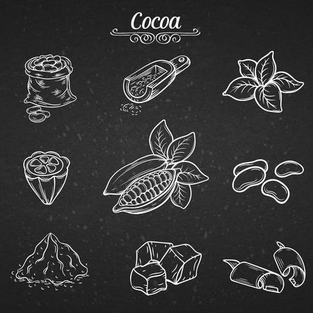 cocoa: set hand draw decorative cocoa chocolate, vector illustration Illustration