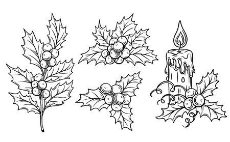 winter leaf: decorative  holly branches and festive candle for scrapbooking, coloring and a festive design.