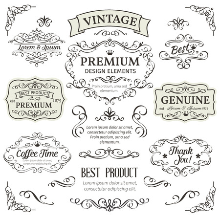 Calligraphic Design Elements . Decorative Swirls,Scrolls, Dividers and Page Decoration.  Vintage Vector Illustration.