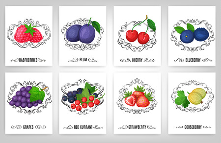 layout strawberry: Fresh berries and calligraphic elements, page decoration and vintage frames.