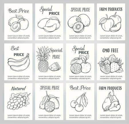 lijntekening: Hand getrokken label set met vruchten. Vector vruchten in de oude inkt stijl. Decoratieve zwart-wit fruit voor veganistische producten, brochures, banner, menu restaurant en op de markt