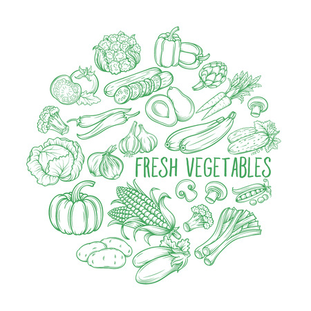 garden peas: Set hand draw vegetables . Vector vegetables  in the old ink style. Decorative monochrome vegetables   for vegan products, brochures, banner, restaurant menu and  market