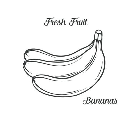 protein food: Hand drawn bananas icon.