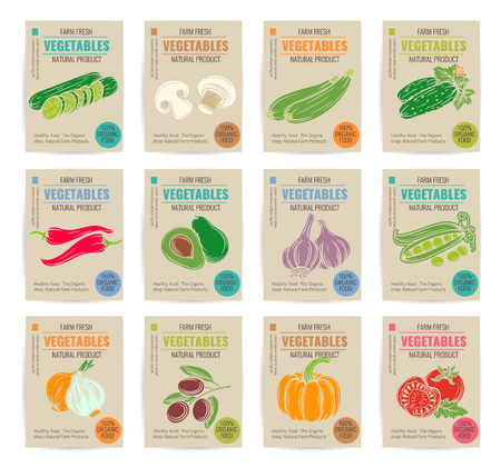 ejotes: dibujados a mano vegetales carteles fijados. Ilustración del vector.
