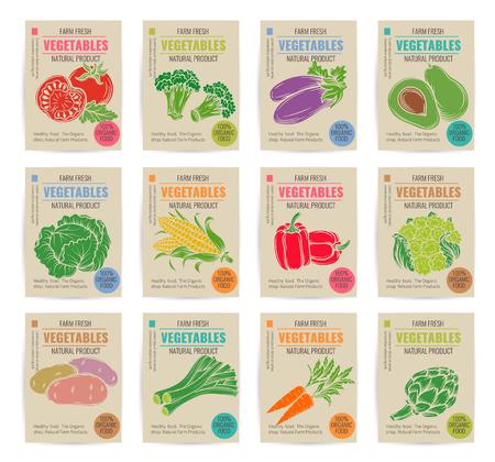 fruit and vegetable: Hand drawn vegetables posters set. Vector illustration.