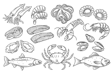 Insieme disegnato a mano di pesce. Icone decorative calamari, polpi, salmone, ostriche, capesante, aragoste, pesce persico rosso, granchi, molluschi e cozze. Illustrazione vettoriale in stile antico di inchiostro Vettoriali