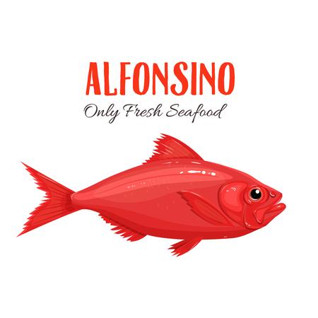 만화 스타일에서 Alfonsino 물고기 벡터 일러스트 레이 션. Beryx 물고기. 해산물 제품 디자인.