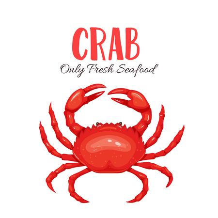 Crab vector illustration in cartoon style. Seafood product design. Stock Illustratie