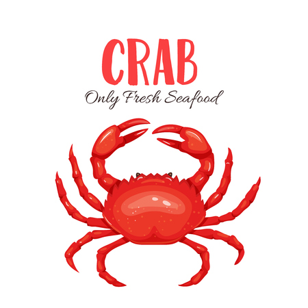 Crab vector illustration in cartoon style. Seafood product design. Illustration