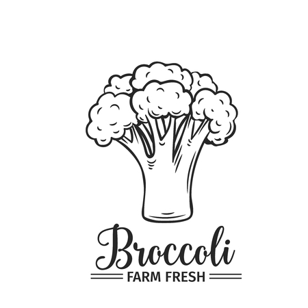 Hand drawn broccoli icon.