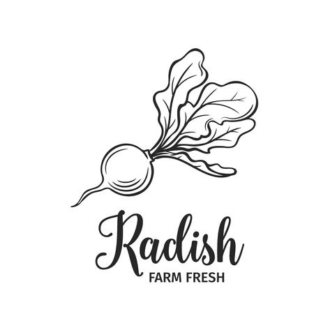 Hand drawn radish icon.