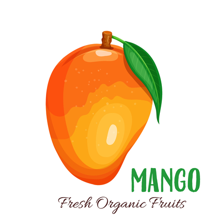 マンゴーのベクトル図