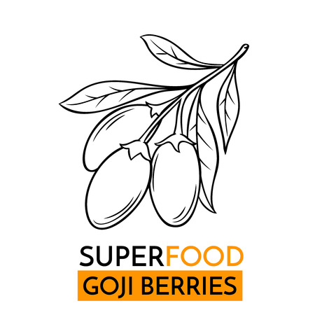 Hand drawn vector icon superfood goji berry. Sketch Illustration in vintage style. Design Template Healthy food.