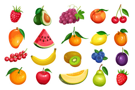 Berries and fruits in cartoon style illustration.