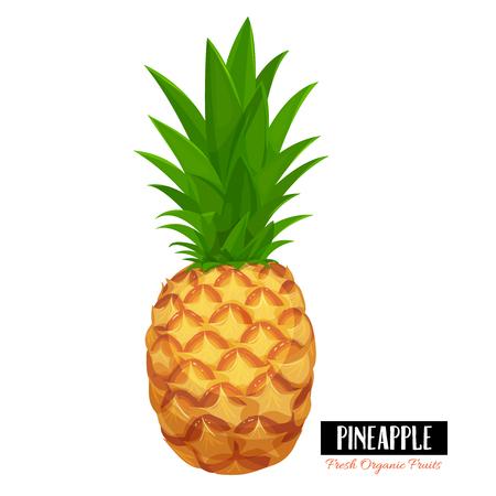 Vektor-Ananas.