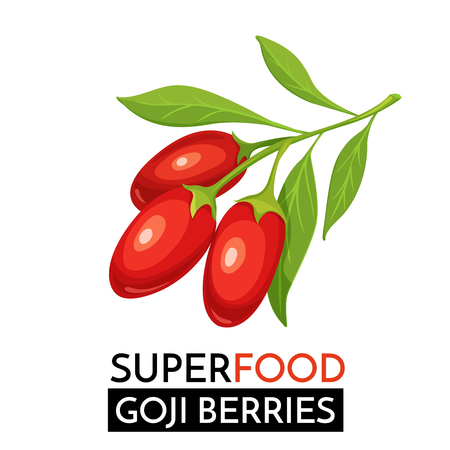 Goji berries vector icon.