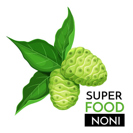 Noni vector icon. Stock Illustratie