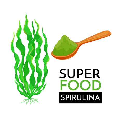 Spirulina vector icon.