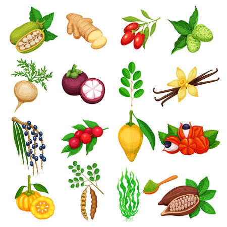 Vector superfood icons set. 免版税图像 - 84705396