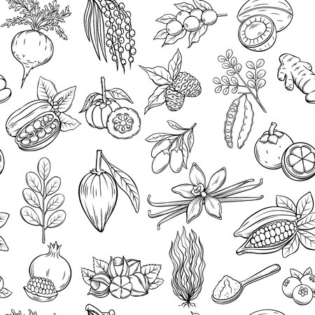 Vector hand drawn superfood seamless pattern. Illustration
