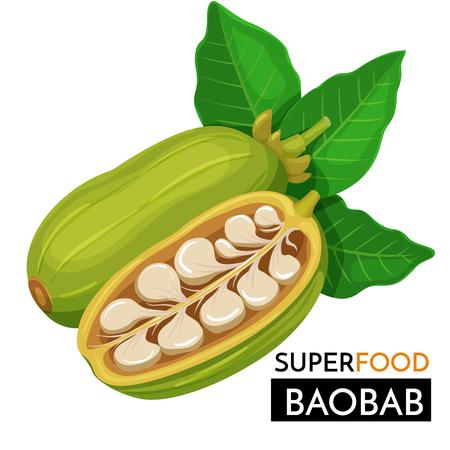 Baobab vector icon.