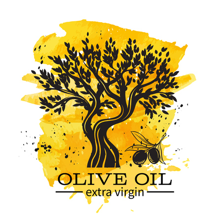 Olive oil banner with hand drawn olive tree in retro sketch style for ancient greek label , emblem market. Watercolor design. Illustration