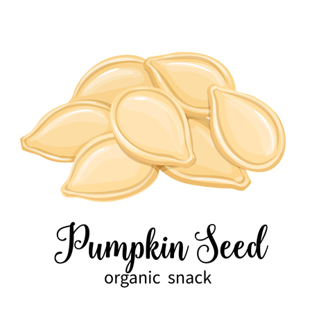 pumpkin seeds Illustration
